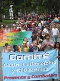 comite contra la homofobia